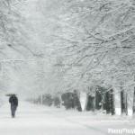 Giải mã các bí ẩn giấc mơ thấy tuyết trắng
